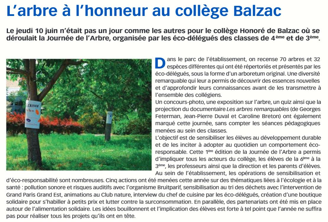 article arbre2.PNG